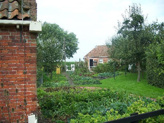 Zuiderzee Museum (Zuiderzeemuseum): View of gardens at Zuider Zee Museum