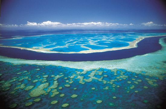 Great Barrier Reef, Australia: Hardy Reef