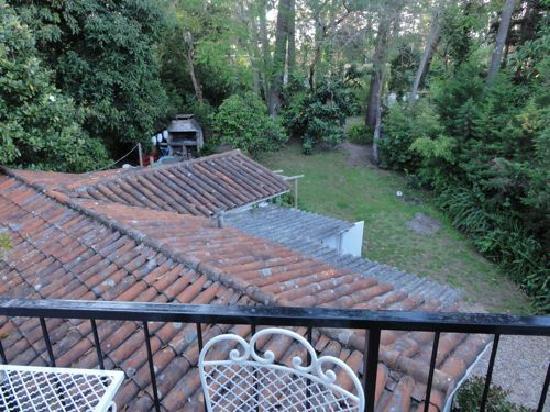 La Lomita del Chingolo B&B: View of back yard from master suite