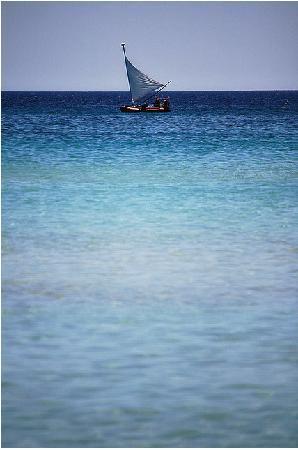 Lecce, Italie : Porto Cesareo beach