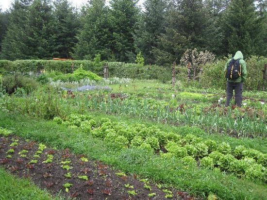 La Confluencia Lodge: vegetable gardens