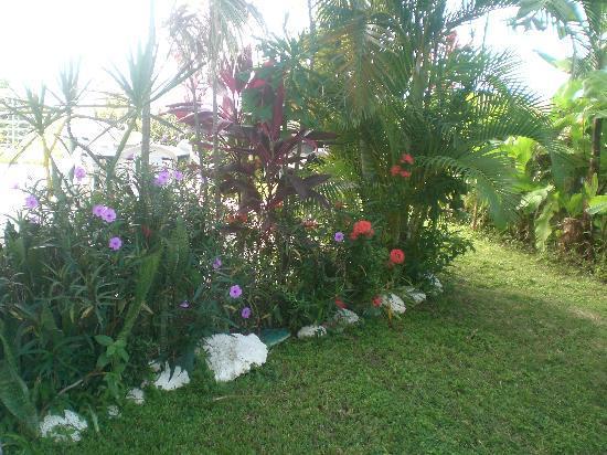 EV's Vacation Rentals Rincon Puerto Rico: EV rental