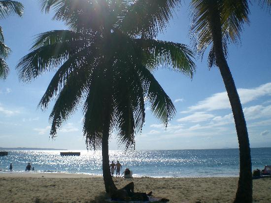 EV's Vacation Rentals Rincon Puerto Rico Picture