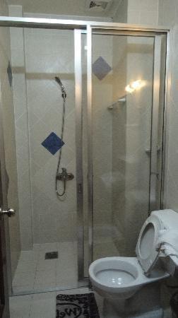 Bich Duyen Hotel : bathroom and toilet