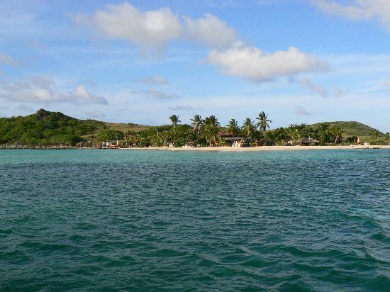 Eco-Snorkeling: ilet pinel