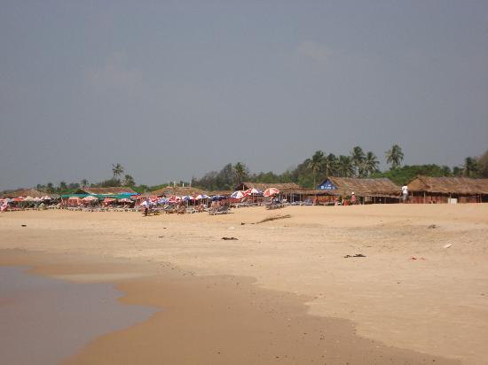 Santana Beach Resort: Local beach in Candolim lots of beach shacks