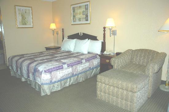 Magnolia Inn: 80 Spacious Rooms with King or 2 Double Beds! All rooms have Hair Dryers, Coffee Makers, Iron an