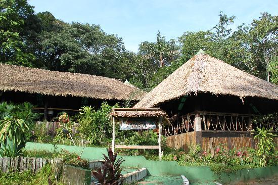Amazon Village Jungle Lodge : Amazon Village