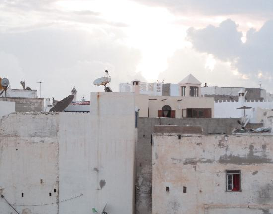 Riad Cactus Bleu : Sur la terrasse