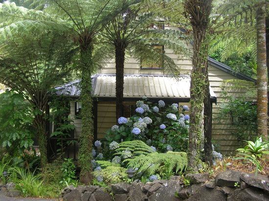The Ferns: Self Contained guest cottage 'The Chalet'