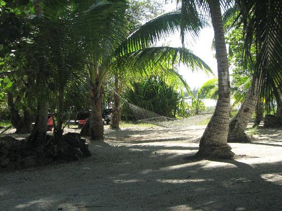 Small Hope Bay Lodge: Hammocks are everywhere!