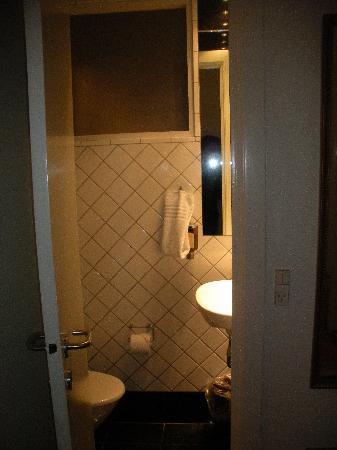 Ascot Apartments: toilet