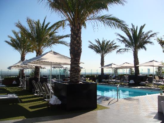 The London West Hollywood  Roof Top Pool. Outside   Picture of The London West Hollywood  West Hollywood