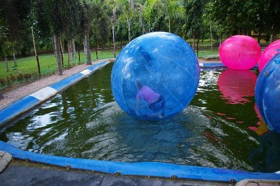 Davao Zorb Park : Park 2