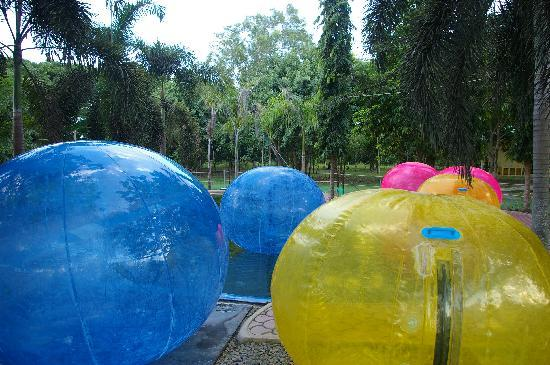 Davao Zorb Park : In the ball