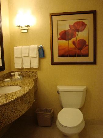 Hilton Garden Inn Tampa / Riverview / Brandon: Nice, clean bathroom
