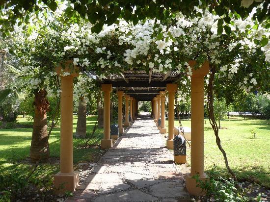 Hotel Riu Tikida Garden: ALLEE DE L ENTREE