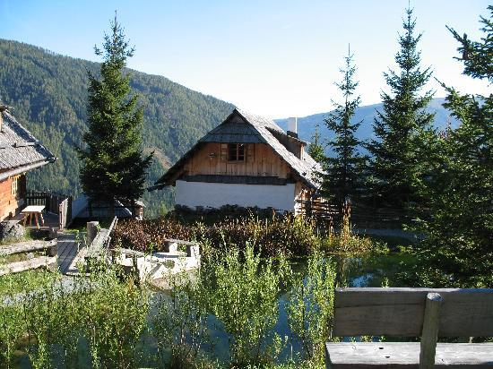 Patergassen, Austria: View of Village Pond with Cabin