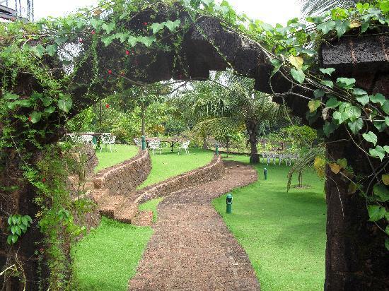 Around SwaSwara...