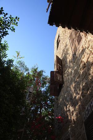 Al Quseir Hotel : Detail of the facade