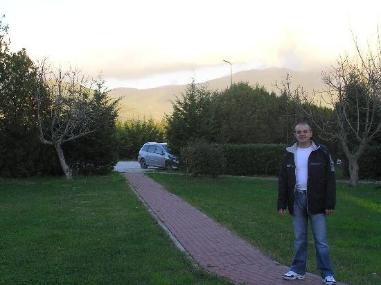 Airone Pisa Park Hotel: Back Garden & Parking