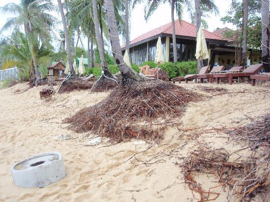 Pinnacle Resort Samui: strand