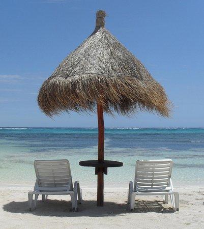 هوتل أريناس: Beach CLUB