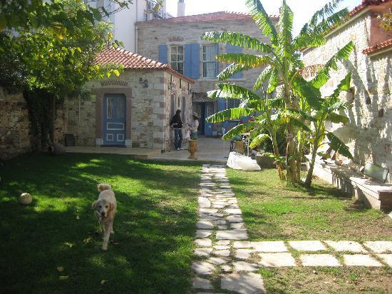 The Courtyard Picture Of Lola 38 Foca Tripadvisor