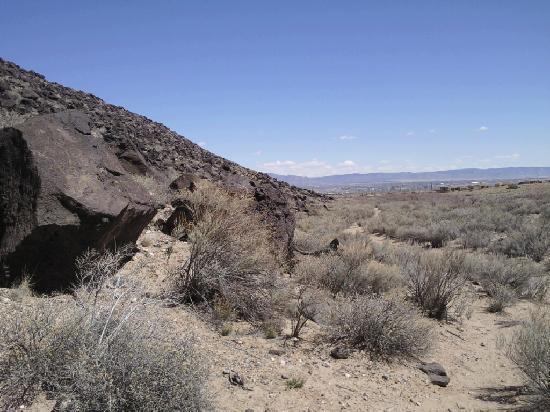 """Petroglyphs! Guest House: """"South End"""" Petroglyph National Monument"""