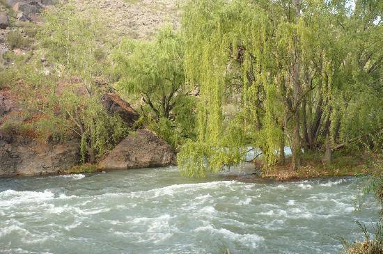 Complejo Rio Azul: El patio..un placer dormir con el ruido del atuel