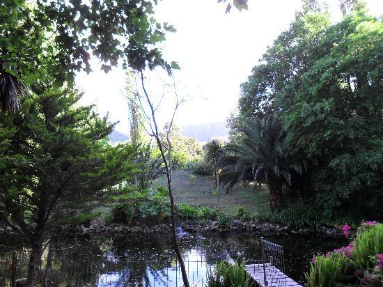 Waterland Lodge: lush surroundings