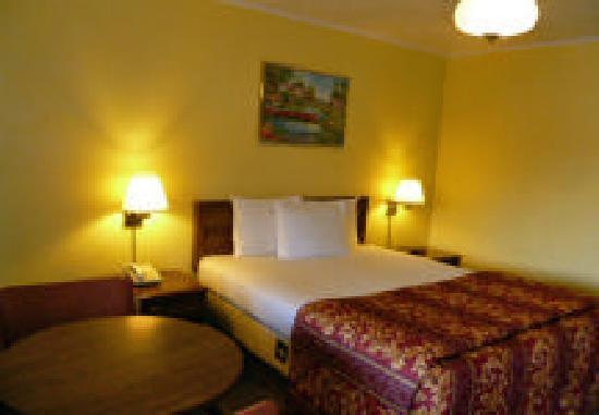 Mountain View Inn : Single Room