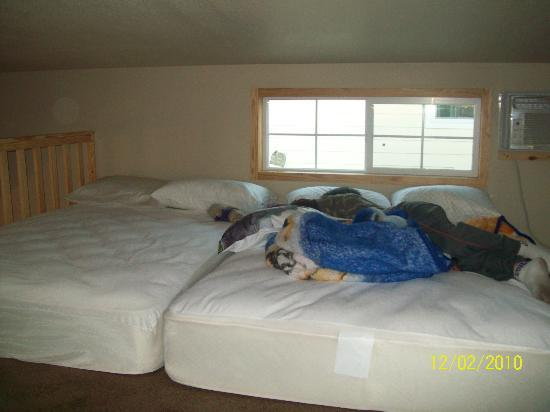 Hill Country Cottage and RV Resort : Loft beds put together make a huge bed!