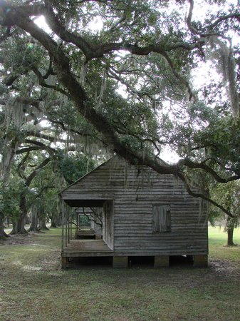 Exceptionnel New Orleans, LA: View Of The Slave Quarters   Evergreen Plantation