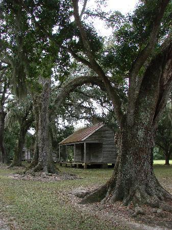 Evergreen Plantation: view of one of the slave quarters