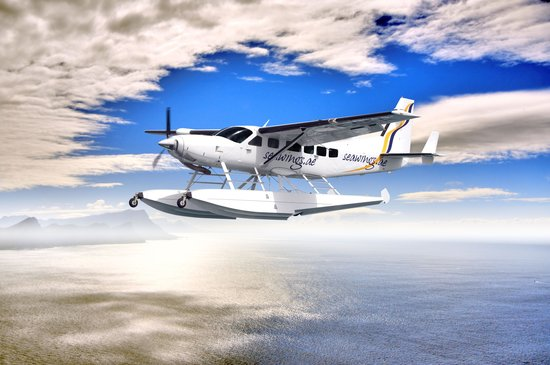 Seawings Seaplane Tours: See Dubai as Never Before