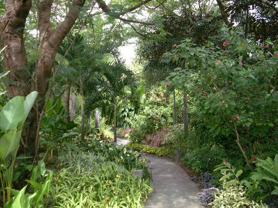 Princess D'An Nam Resort & Spa: garden