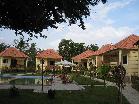 Au Cabaret Vert: bungalow et piscine