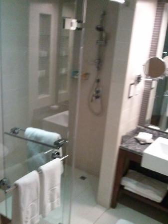 Amwaj Rotana: Wet room