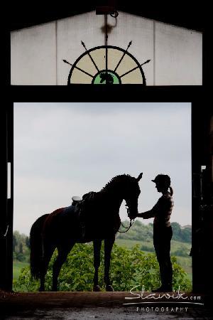 Il Paretaio: Our fantastic stables