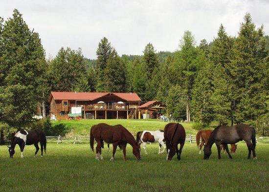 Rich's Montana Guest Ranch