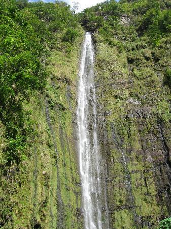 Pipiwai Trail : Waimoku Falls