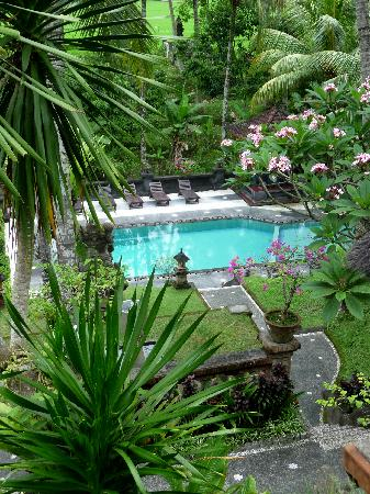 Artini 3 Cottages: Yet, gorgeous grounds