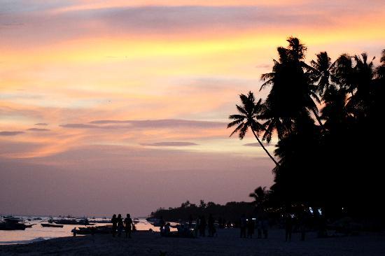 Amorita Resort: Sunset at the Beach