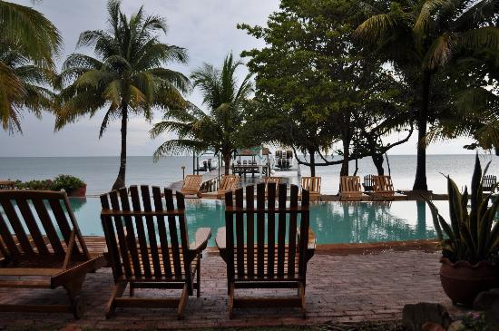 Hamanasi Adventure and Dive Resort: Few over the pool