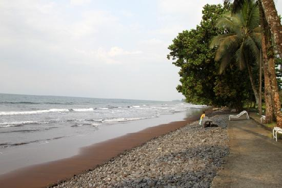 Hotel Seme Beach : Pretty idyllic picture of the beach (make sure to take the right cut in your photos)