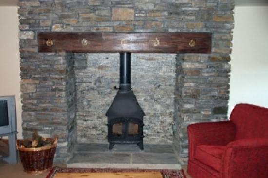 Cilhendre Fawr Farm Cottages: Log burners in each cottage