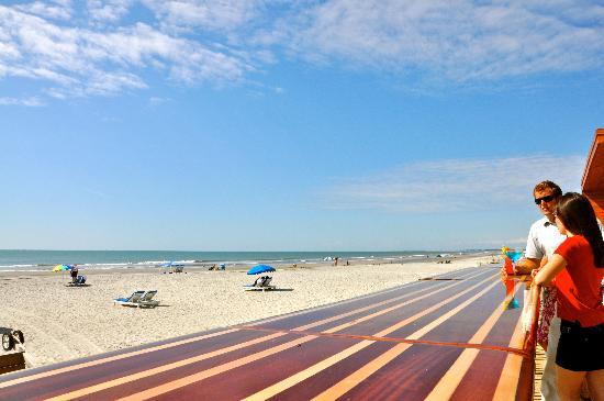 Blu Restaurant Folly Beach Menu