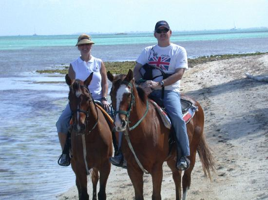 Pampered Ponies, Limited: Riding on the north beach