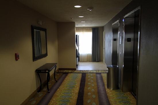 Hampton Inn & Suites Carlsbad: Elevator Area
